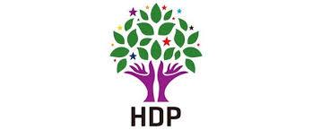 HDP Viranşehir'de seçim sonuçlarına itiraz etti