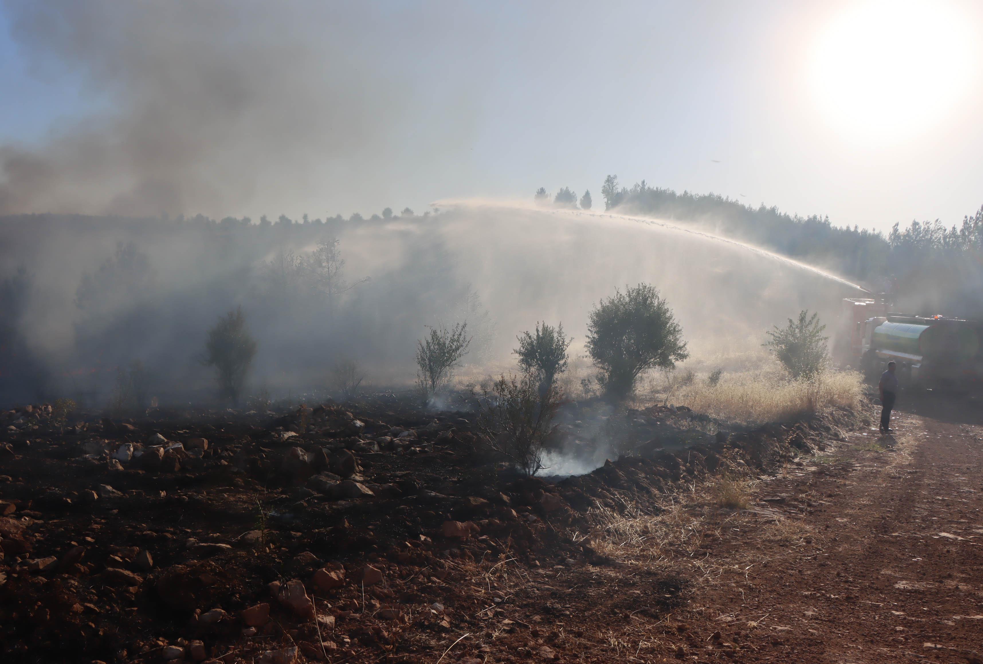 Şanlıurfa'da ormanlık alandaki yangın kontrol altına alındı