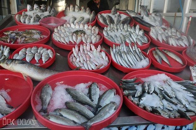 Balıkçılar pandemi döneminde balık yenilmesini öneriyor