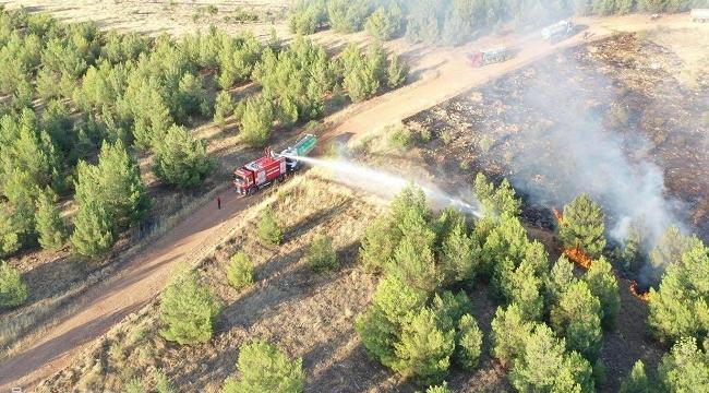 Şanlıurfa'da ormanlık alanda yangın çıktı