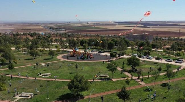 Hilvan Belediyesi uçurtma şenliği düzenledi